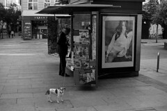 * (doistrakh) Tags: slr olympus om4ti zuikoautos40mmf2 filmcamera vintagecamera 135 film monochrome bw blackandwhite travel europe spain espana streetphotography madrid dog snapshot