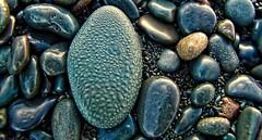 A lapidarist's delight! (Starkrusher) Tags: ontheocean newfoundland nl macro atlanticocean seashore