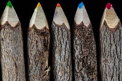 Pencil Sticks Texture (jeff's pixels) Tags: macromondays memberschoicetexture texture pencils wood sticks color colored carve bark nature