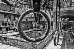 A family circle (Pejasar) Tags: oklahoma norman yard deck trees geometric family swimmingpool backyard playground ring blackandwhite bw