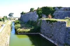 Les fortifications et les douves vues du pont dormant de la porte Royale. (florence.V) Tags: france poitoucharentes charentemaritime 17 iledoléron lechâteaudoléron citadelle bastion
