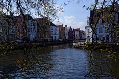 Ville près de l'eau (R20100 photographie) Tags: ville arbre maison batiment eau canal ciel coloré bruges belgique