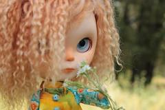 IMG_7319 (helenaaahaha) Tags: blythe blythedoll blytheinrussia bigeyes blythedollcustom customblythe custom customizedbyhelenaaa cutethings gingerhair fbl freckles weekend sweety summer