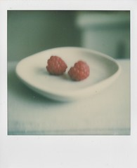 yield (elin*) Tags: sx70polaroid impossibleprojectcolourfilm raspberries homegrown