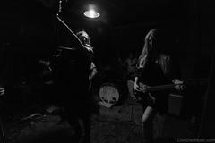 20170716-_DSC1470 (CoolDad Music) Tags: lowlight littlevicious jollydaggers bondstbasement asburypark