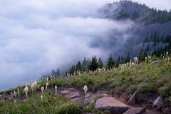 Trail (Laura Jacobsen) Tags: alpinelakeswilderness bandera banderamountain hiking i90 iraspringtrail littlebandera mountains sunset trails washington wildflowers
