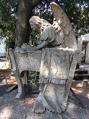 Angel attendant (ashabot) Tags: milan milano cimiteromonumentale monumentcemetery statues cemetery cemeteries mementomori art