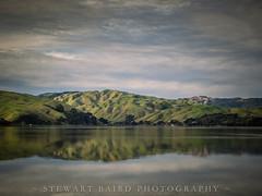 Reflected (stewartbaird) Tags: beach landscape winter pauatahanui nature reflection clouds hills cloud newzealand sea