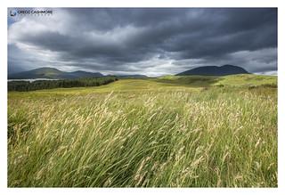Rannoch Moor, Scotland.