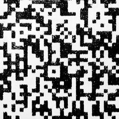 QR-Code (Alfredo Liverani) Tags: canong5x canon g5x qrcode memberschoicetexture macromondays macro mondays monocromo motivo