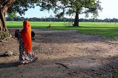 IMG_6333 (dr.subhadeep mondal's photography) Tags: streetphotography kolkata canon candid color calcutta india indianstreet victoriamemorialhall maidan kolkatamaidan urban life people tree subhadeepmondalphotography outdoor