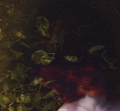 eve (kristen t. cates) Tags: girl eve adam story vine conceptual photography kristen cates redhead red hair vines greenery green texture by brooke shaden pollen dust portrait selfportrait dark art fine