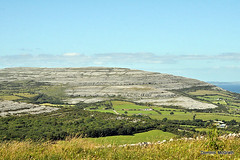 Sunlit Burren. (mcgrath.dominic) Tags: wildflowers theburren coclare