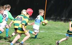 11 (Rugby Babice) Tags: u8 praga 2017