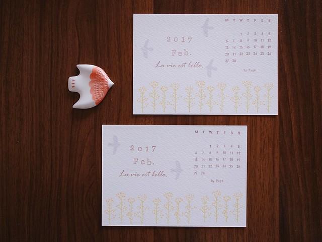 二月-油菜花