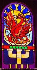 The Phoenix Bar, Dundee (that petrol emotion) Tags: phoenix publichouse bar pub nethergate dundee tayside camra