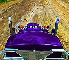 Lookin Down (jr-transport) Tags: kenworth w900l logger def epa custom purple