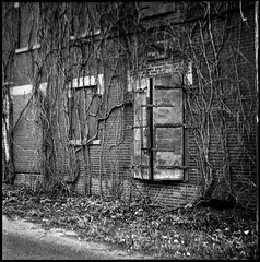 Decemented (argentography) Tags: rolleiflex k4a peoria illinois midwest ilford hp5monochrome blackandwhite decemented
