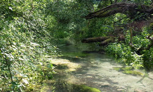 Letcombe Brook