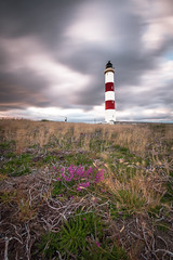Tarbat Ness Lighthouse (MBDGE) Tags: tarbat lightroom lighthouse longexposure long landscape hill flower composition sky cloud canon70d contrast bands safety scotland alba northsea neutraldensity moray firth