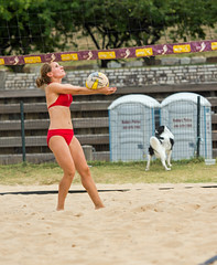 2017-07-21 BBV Coed Doubles (46) (cmfgu) Tags: craigfildespixelscom craigfildesfineartamericacom baltimore beach volleyball bbv md maryland innerharbor rashfield sand sports court net ball outdoor league athlete athletics sweat tan game match people play player doubles twos 2s coed bikini
