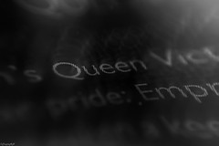 She Was A Queen👑 (traptiantiwary) Tags: book text paper page blackandwhite queen macromondays macro canon canoneos theme
