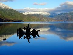 Maihue (CamilaMorales75) Tags: nature lago reflejo montañas paisaje tronco naturaleza playa paseo sony dschx400v