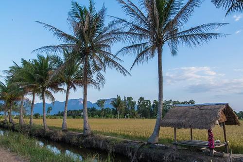 parc national sam roi yot - thailande 24