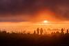 Le lever du soleil-HDR (zambaville) Tags: ile réunion piton fournaise bert bois vert volcan éruption lever soleil cratère lave coulée océan indien canon eos 5ds r 5dsr ef 100400 mm f4556l is usm ii version 2 lesquelin