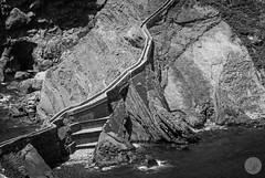 San Juan (jdelrivero) Tags: provincia costa lugares rocas geologia bizkaia españa sanjuandegaztelugatxe geology places spain euskadi es