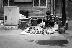 Surviving (Go-tea 郭天) Tags: pékin beijingshi chine cn beijing hutong gulou seller food vegetable market old lady woman busy duty business work working floor poor farmer dirty ground alone lonely no client customer pots plastic bags box bricks sad candid portrait shop street urban city outside outdoor people bw bnw black white blackwhite blackandwhite monochrome naturallight natural light asia asian china chinese canon eos 100d 24mm prime