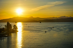 Sunset by the Bay (World-viewer) Tags: sunset evening golden hour goldenhour bay water marine landscape outdoor beautiful vancouver bc canada mountains boats ilce6000 sony a6000 artistic nature skyline ngc travel national geographic bluehour beach lighthouse vanishing light fantastic