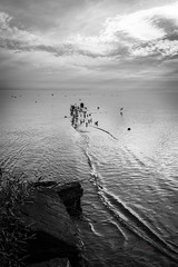 Pier (_Matt_T_) Tags: ripple grimsby lines bw lakeontario gulls hdpdfa1530mmf28edsdmwr