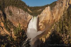 Lower Yellowstone Falls (mghornak) Tags: loweryellowstonefalls river water yellowstonenationalpark waterfall nationalpark canon canoneos5dmarkii june2017 landscape