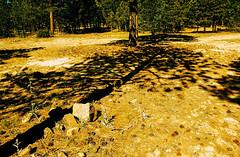 Mogollon shadows (kevin dooley) Tags: eximus eximuswideandslim mogollon mogollonrim xpro crossprocessed lomographyfilm
