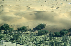 Sossusvlei. Sossus river sand up from sea and spread along back of dunes.