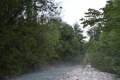 sDSC_3445 (L.Karnas) Tags: slowenien slovenia slovenija sommer summer juli july 2017 gozd martuljek kranjska gora