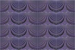 Lordington Lavender Patterns (fstop186) Tags: lavender lavendula lordington purple patterns field scales velvet texture repeating