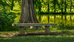 Shaw Nature Reserve summer 2017 (bd_c2c) Tags: ifttt 500px nature landscape hdr canon adobe photoshop lightroom bench lake eos reflections missouri botanical garden natural beauty preserve shaw reserve 70d front grey summit william davis photography efs55250mm f456 is stm