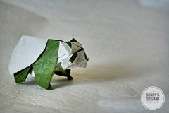 Panda designed by Yoo Tae Yong (Sunny^o^) Tags: pandadesignedbyyootaeyong sunnysorigami origami