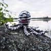 Socktopus (stitchling) Tags: knitty socktopus