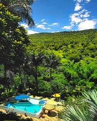 Todos los #días en el #HotelPosadaCampestre son maravillosos, llenos de aventuras y un paisaje hermoso 🍃  #Hotel #Hoteles #Hotels #Hotelería #Nature #Naturaleza #Paisaje #SanGilGrupoHotelero #SanGil #Santander #Piscina #Pool #Zonahúmeda #Árboles #M (hotelposadacampestre) Tags: nature santander montaña árboles naturaleza sangil sangilgrupohotelero hotel hotels zonahúmeda hotelposadacampestre piscina paisaje pool hoteles días hotelería