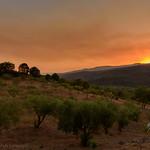 When night falls, Terradurra, Campania, Italy thumbnail