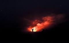 A Beautiful Place (mitalpatelphoto) Tags: adventure bigisland blue clouds creation earth explore glow hawaii horizontal indurotripod jagger land landscape lava nationalpark nature nikon pacificocean photography stars steam travel usa visit volcano water pāhoa unitedstates us