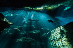 Alien Invaders (altsaint) Tags: 714mm chacmool gf1 mexico panasonic cavern caverndiving cenote scuba underwater