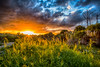 Sunset in the Hood (DonMiller_ToGo) Tags: cloudporn landscape sunsetmadness sunsets skypainter goldenhour skycandy clouds hdr 3xp sunset nature skyscapes sky sunsetsniper hdrphotography d810 outdoors florida