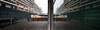 Rotterdam 30-07-2017-6 (Pure Natural Ingredients) Tags: rotterdam rotjeknor 010 nederland thenetherlands holland zuid queen elizabeth ship boat cunar cruise line hal wilhelminakade lijn