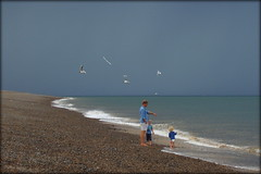 Rain Approaching with Gulls (Corble!) Tags: sea gulls blue seaside norfolk beach pebbles holiday