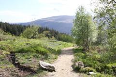 Ben Lomond (orbit9000) Tags: outdoor nature scotland lomond