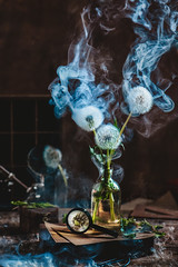 Smoakin' summer (Dina Belenko) Tags: white flower aged art beauty bouquet decoration retro style floral artistic color conceptual fineart flora plant vase antique vintage composition fragrance stem dandelion seed nature dark beautiful green wind blowball fluffy fun delicate black natural space dream fantasy flying gently imagination magical detail fine prop stilllife smoke action burn